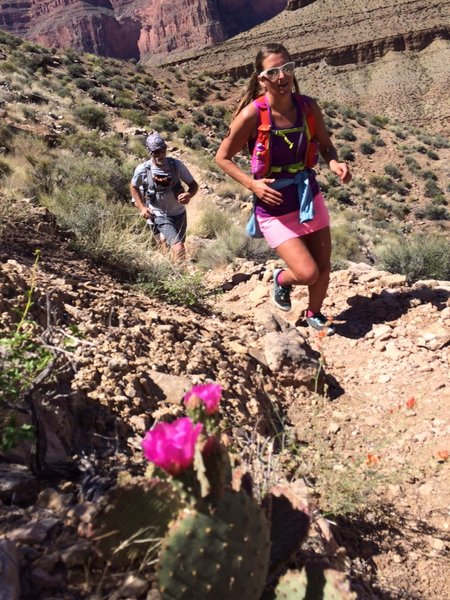 Cruising the Tonto Trail, matching the cactus flowers.