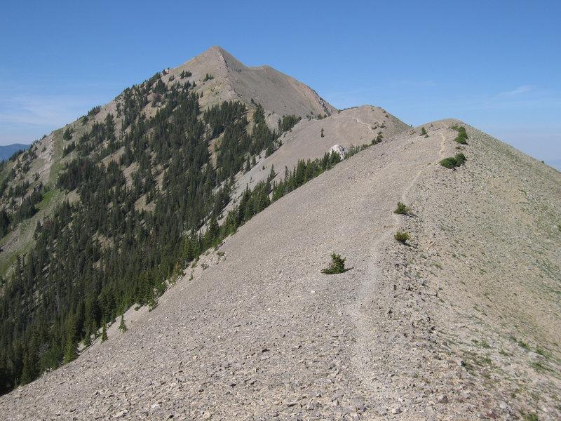 The Bridger Ridge