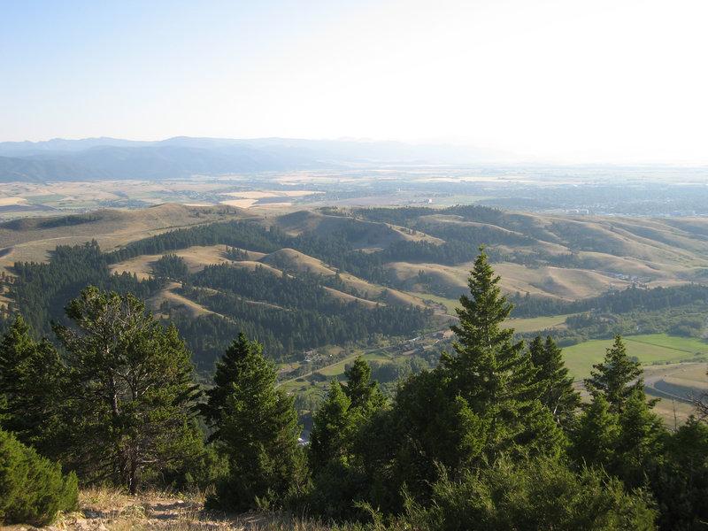 "Above the ""M"" Trail descending off the Bridger Ridge."