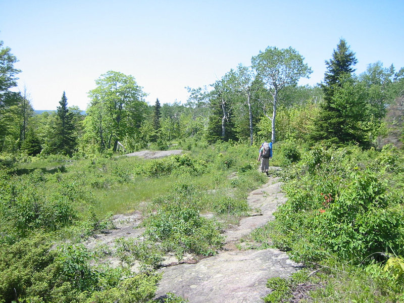 Solid rock trail portion of the Greenstone Ridge Trail