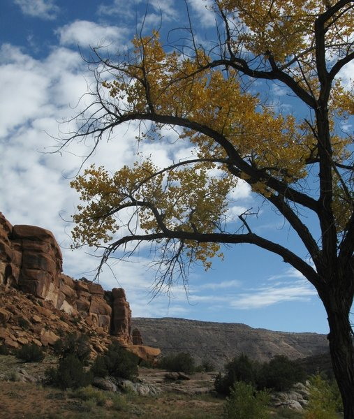 Red cliffs, blue sky and beautiful fall colors.