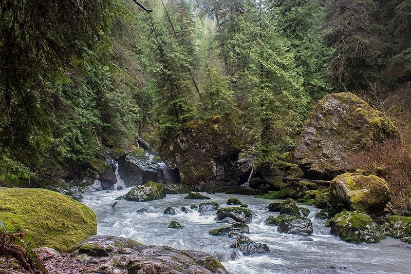 Rapids along the Boulder River Trail