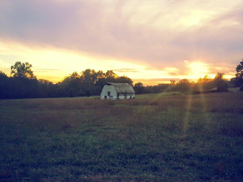 Old barn on Vaughter's Farm.