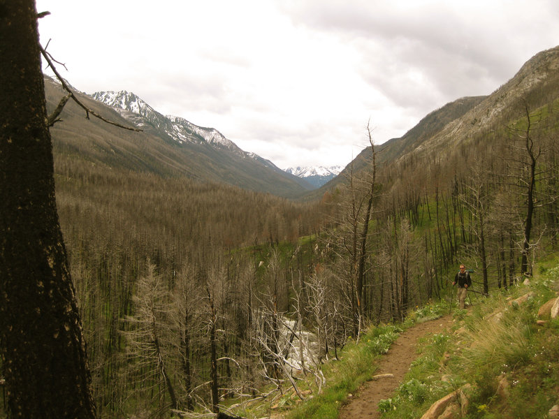 The West Fork of the Boulder River drainage.