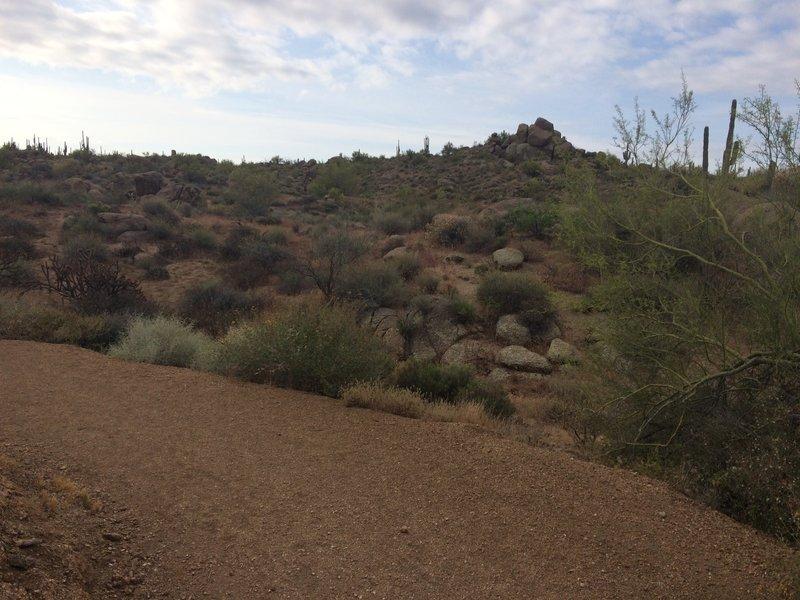 Interpetive Trail
