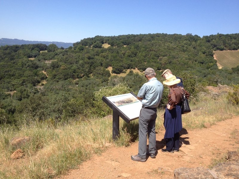 Intense studying on the Sonoma Overlook Trail