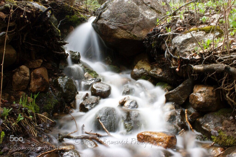 A beautiful stream on Cub Lake Trail!