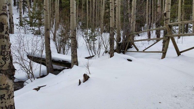 Spring in the Rockies