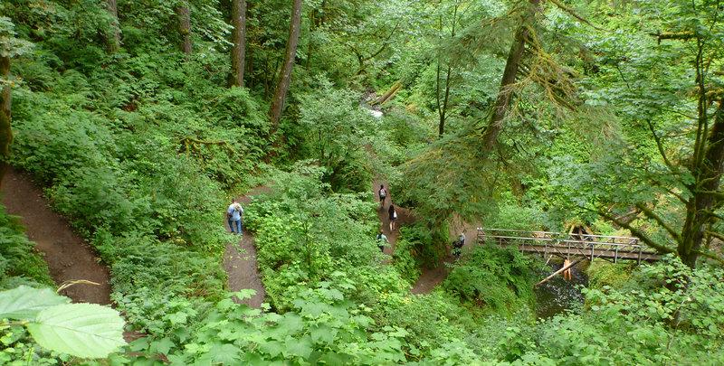 Switchbacks down to Oneonta Creek.
