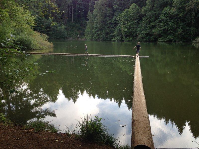 Cronmiller Lake - Balancing act along the trail.