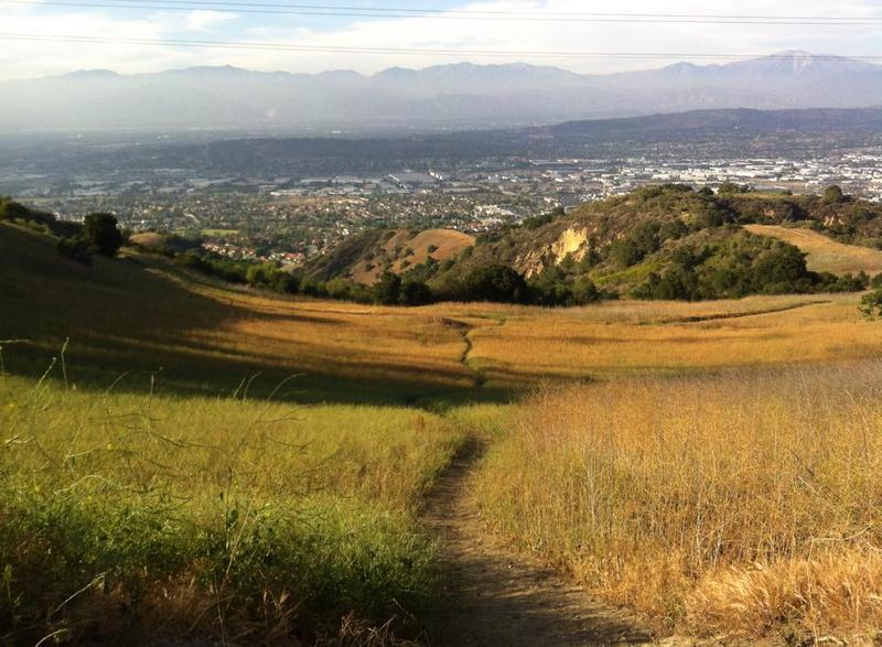 Looking over Rowland Heights, a small singletrack leads down to Schabarum Trail in the distance.