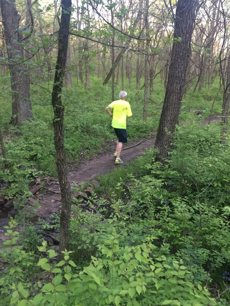 The Orange Trail is popular with runners