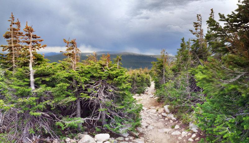 Looking back down Mount Audubon