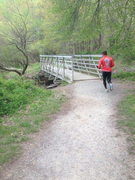 Ronald Craven Trail bridge crossing