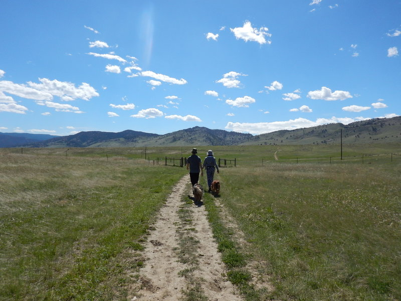 On the Degge Trail, approaching the junction with the Mesa Reservoir Trail