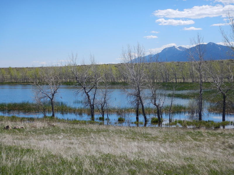 The marshy Mesa Reservoir - don't enter, it is a protected wildlife area