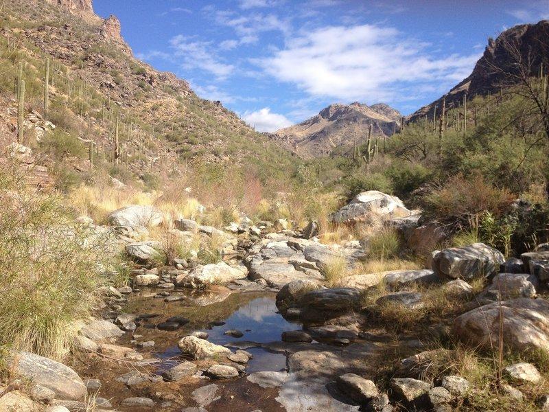 River bed at Bear Canyon