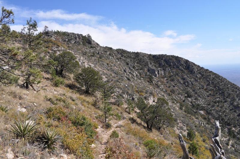 Along the ridge on the Bear Canyon Trail