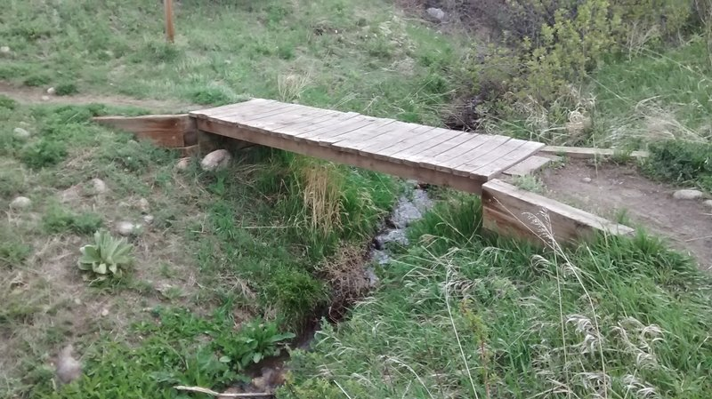 A bridge over a small brook. The vegetation near this water source is beautiful.