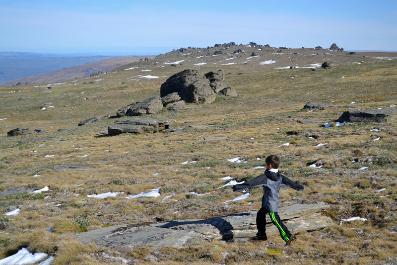 The Rock & Pillar range's broad summit plateau.