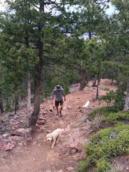 Steep and rocky section of Ranger Trail