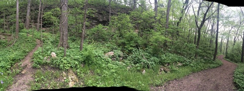 Rock Bluff Outcropping