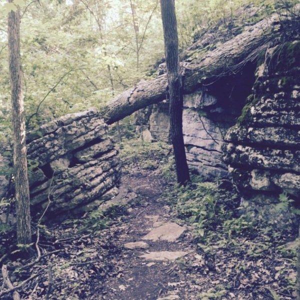 Rock Cuts on the Varnedoe Trail