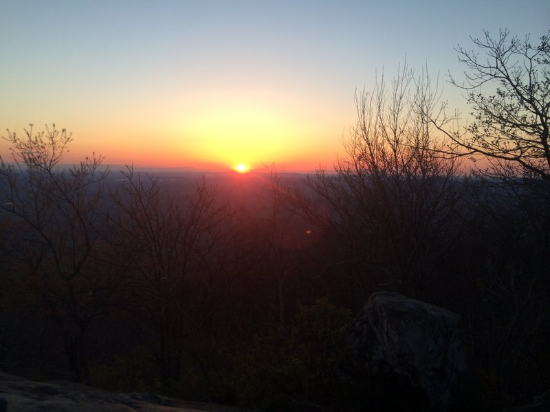Humpback sunrise