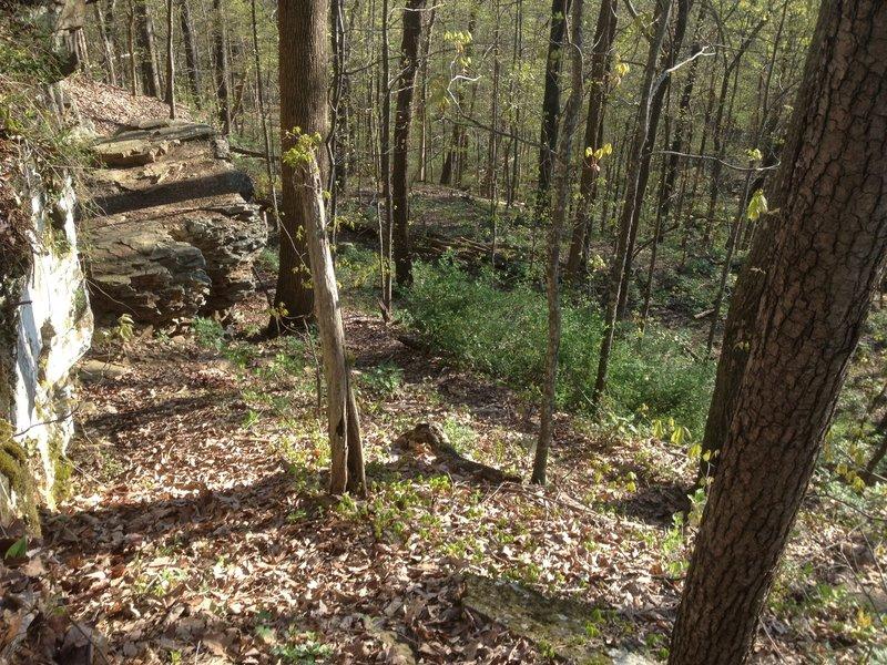 Mountain Mist Trail switch back