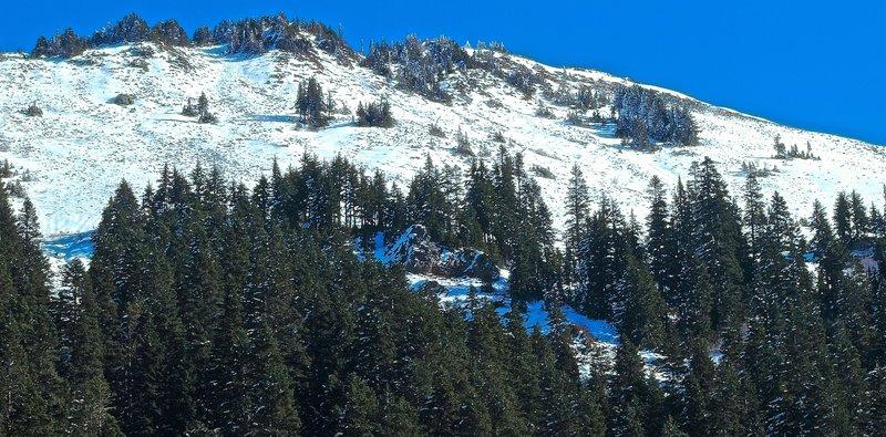 Silver Peak, upper slopes from the Annette Lake Trail
