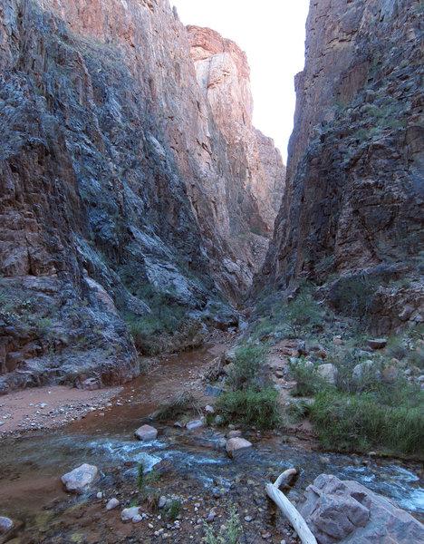 Grand Canyon National Park: North Kaibab Trail - Phantom Canyon.