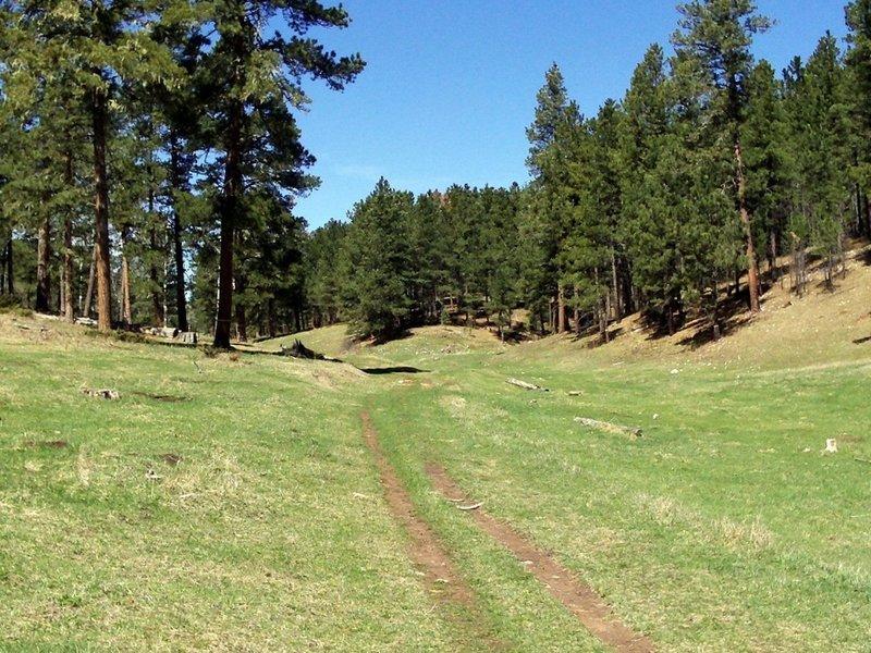 Typical Big Hill trail.