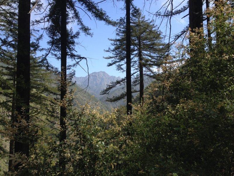 Big views on the Pine Ridge Trail