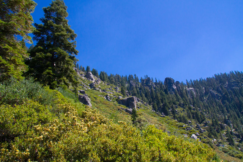 Looking back up from Four Mile Trail.