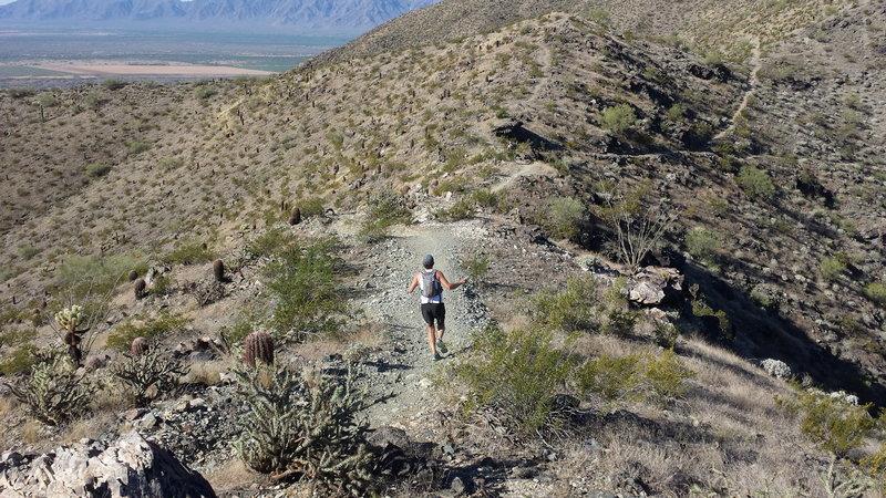 Running along the ridge