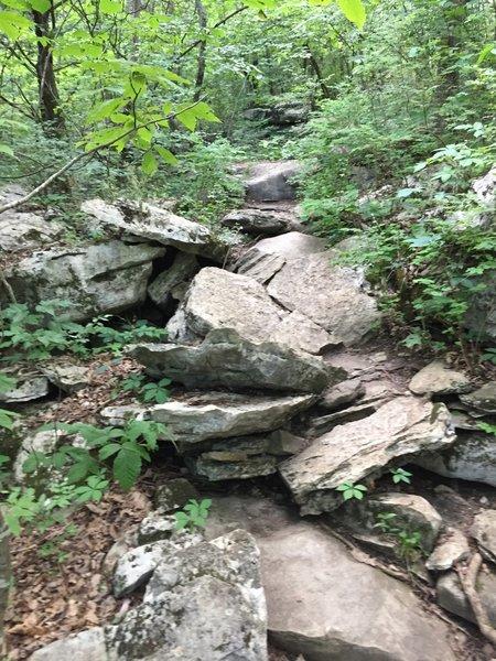 Abundant rocks on the Rainbow Loop