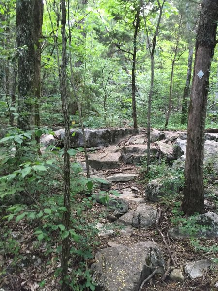 Rocks, and more rocks on Rainbow Mountain.