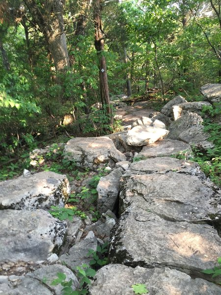 Be sure not to catch your toes in these rocks on the Rainbow Loop trail.