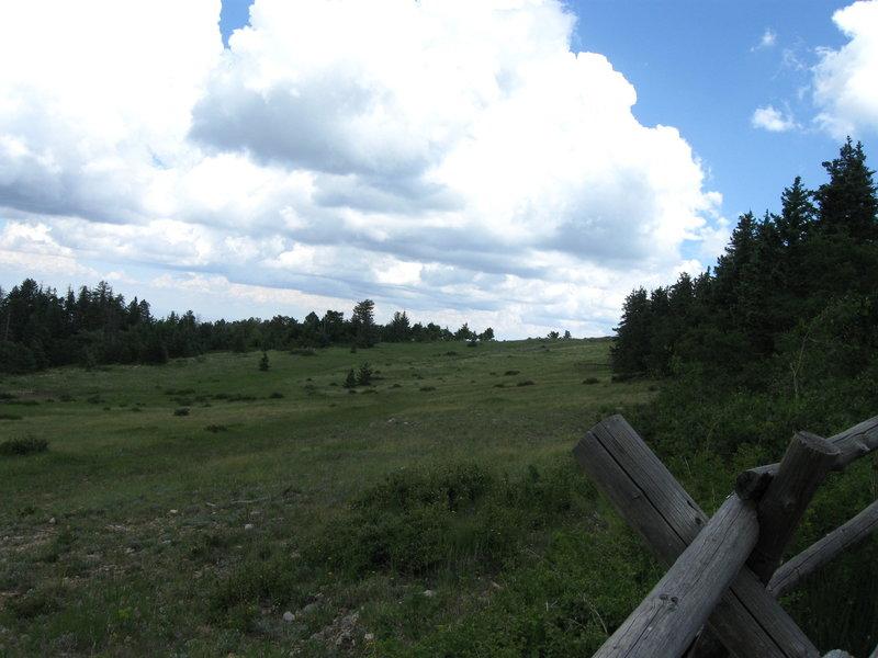 Meadow just below Kiwanis Cabin