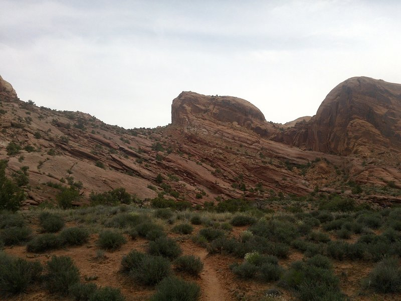 Along the Syncline Loop in Canyonlands.