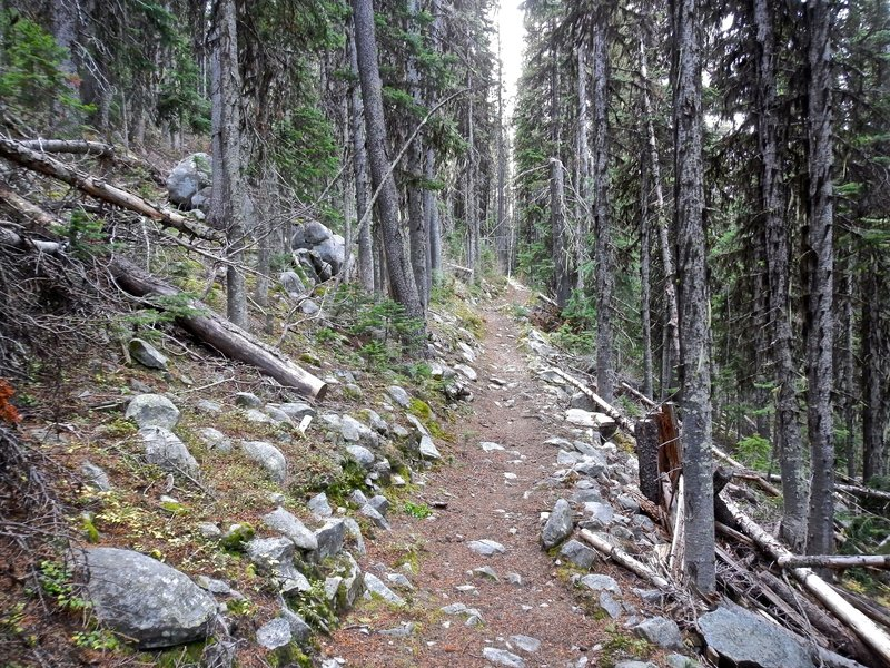 Kettle Crest Trail
