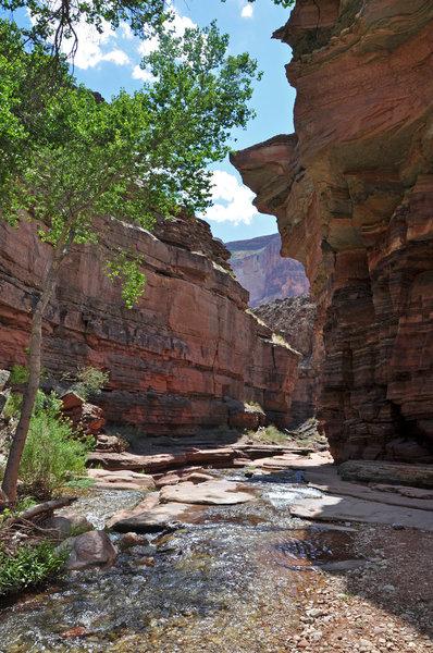 Grand Canyon National Park - Deer Creek