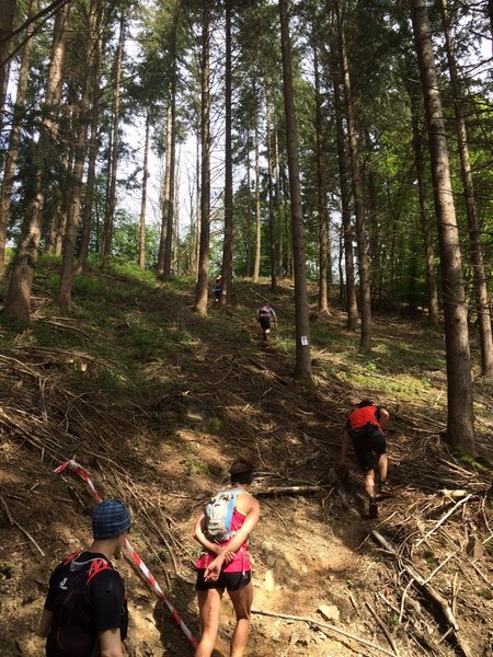 Looking uphill, still full of energy!