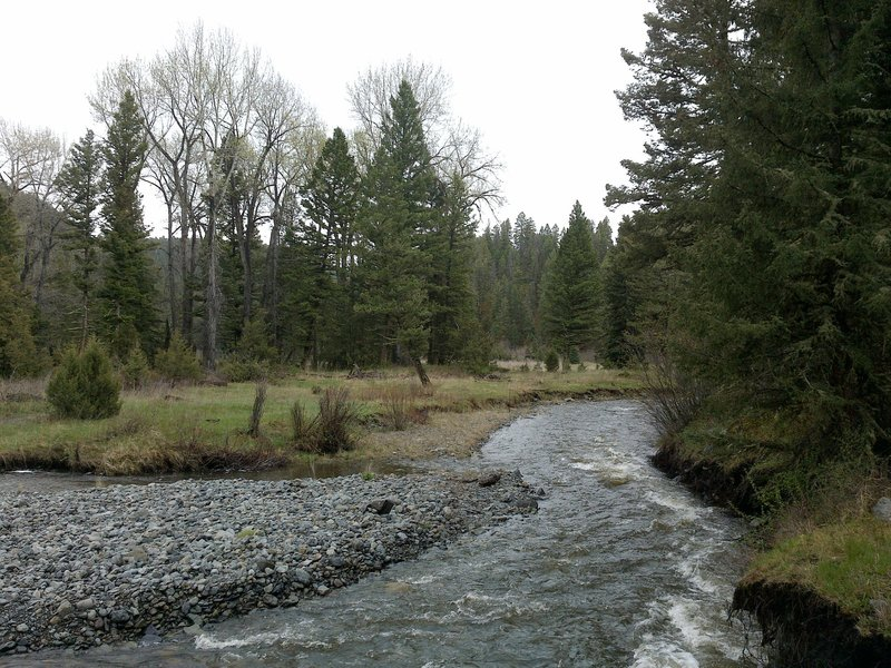 Section of Crow Creek, early in the hike.