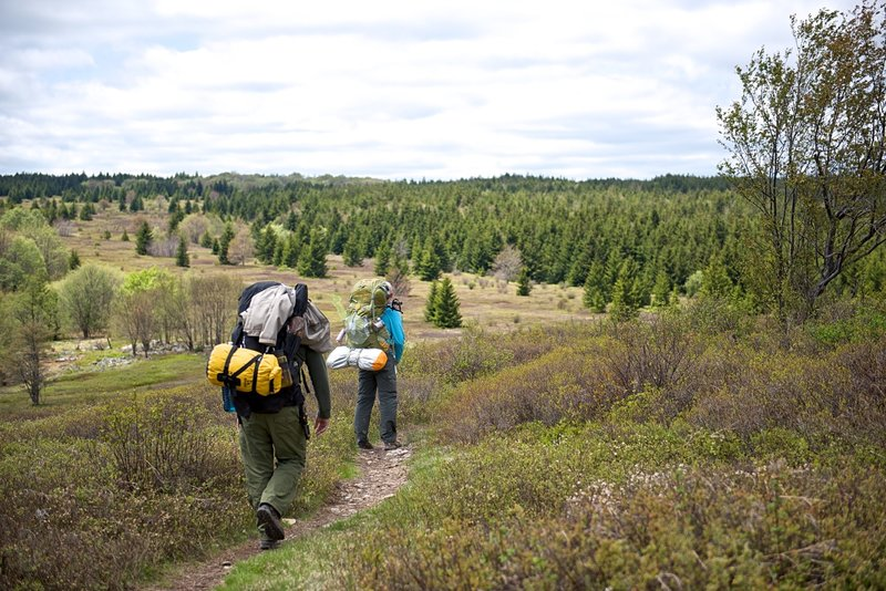 Bear Rocks trail