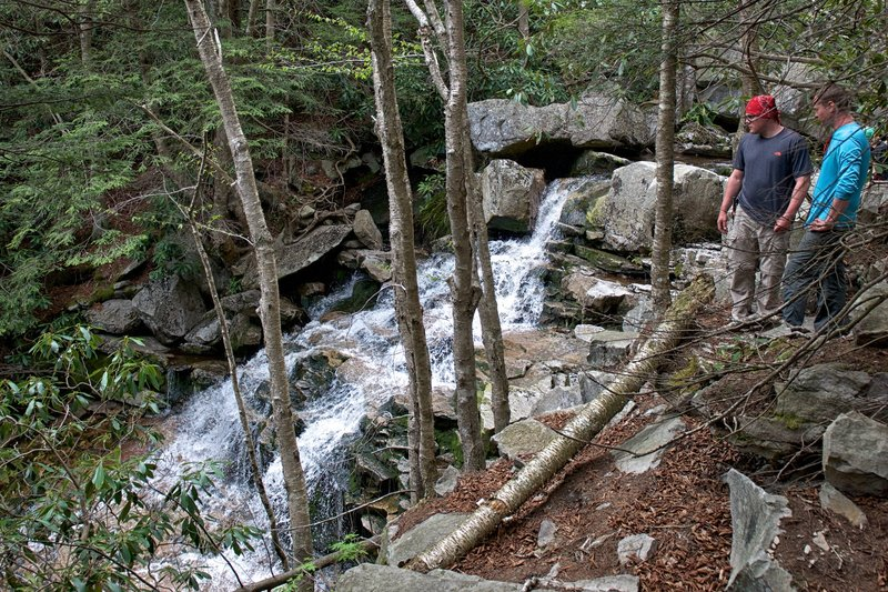 Dolly Sods Waterfall