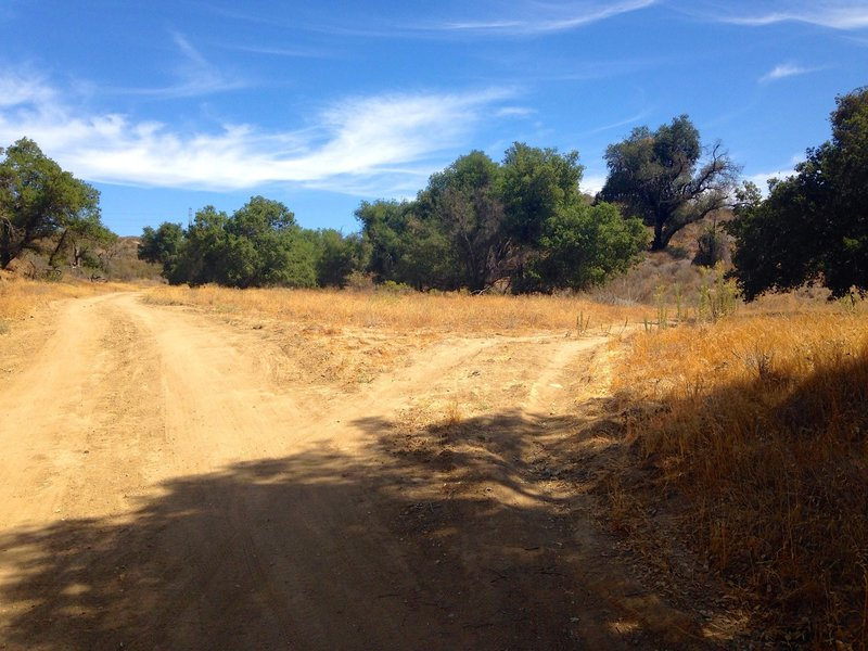 Make sure to stay on the more worn path. It is easy to take a side trail and be on the wrong track.