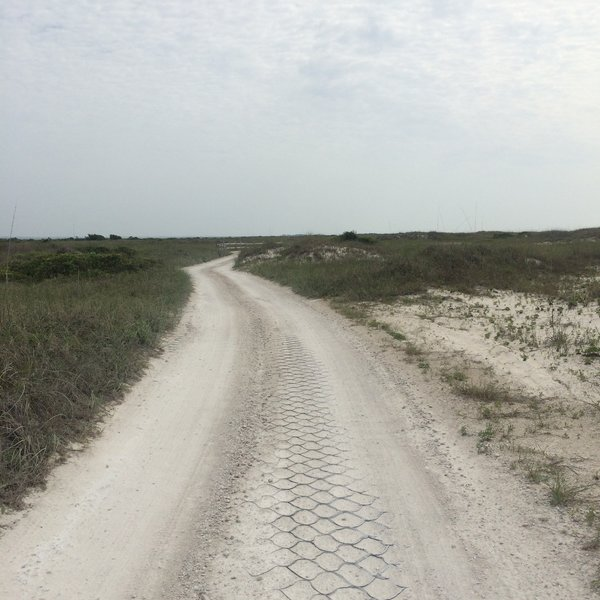 The stabilized sand road runs through dunes and scrub brush.