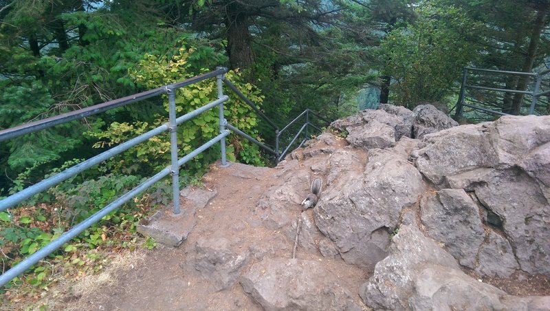 The rugged Beacon Rock Trail.