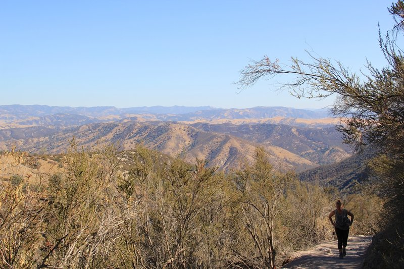 Sightseeing over Pinnacles East